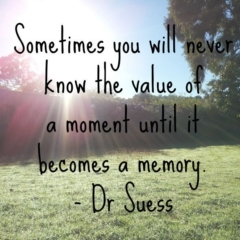 Sometimes you will never know the value of a moment until it becomes a memory! Quote Dr Suess