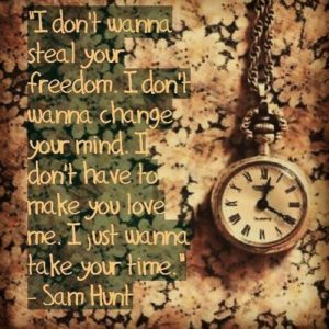 I don't wanna steal your freedom I don't wanna change your mind I don't have to make you love me I just want to take your time! Sam Hunt
