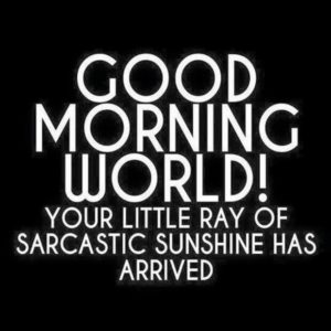 Good morning world!  Your little ray of sarcastic sunshine has arrived!
