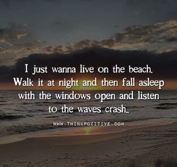 I just wanna live on the beach